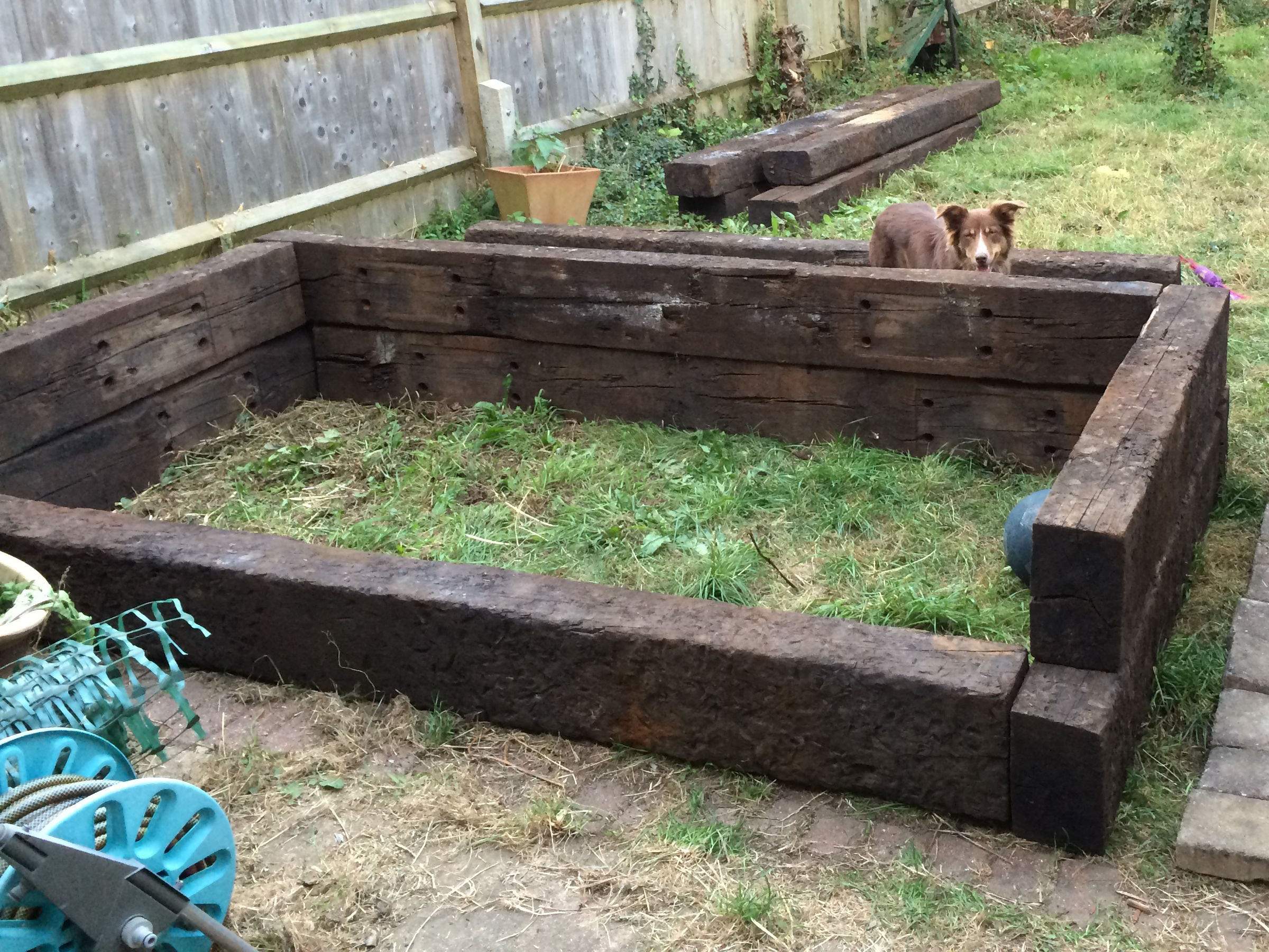 Raised Bed Height 1