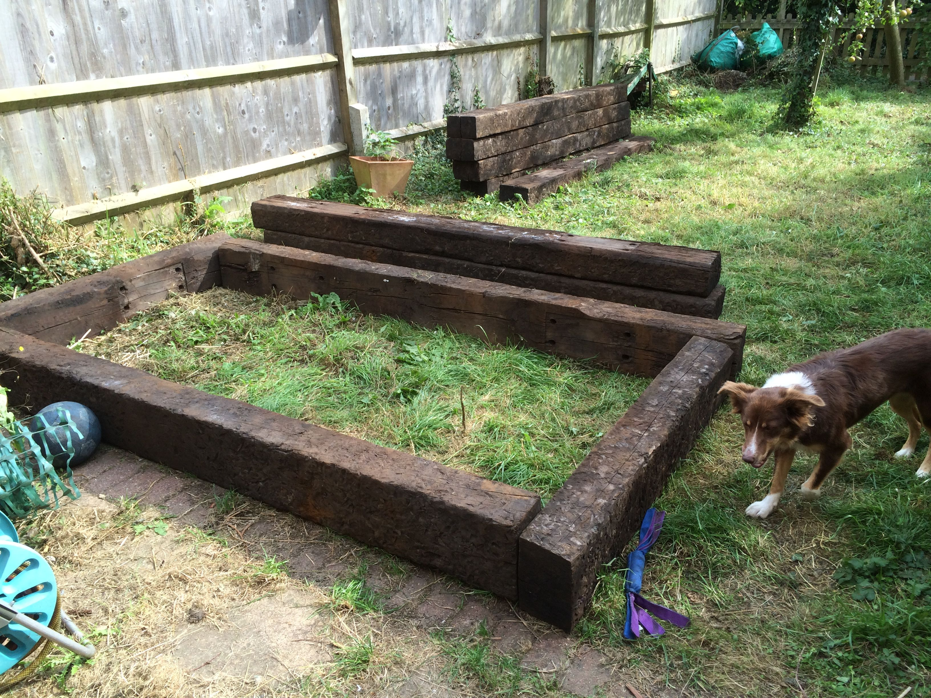 First layout of raised bed